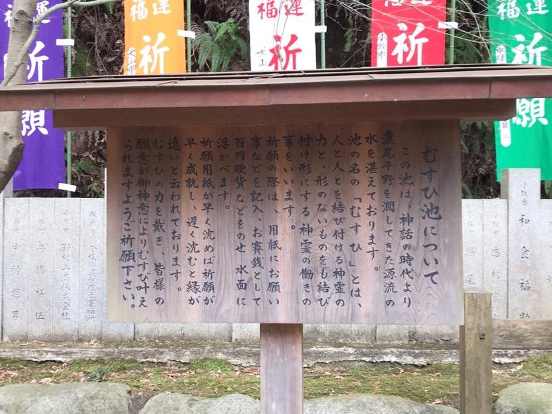 犬山観光 大縣神社8 むすひ池