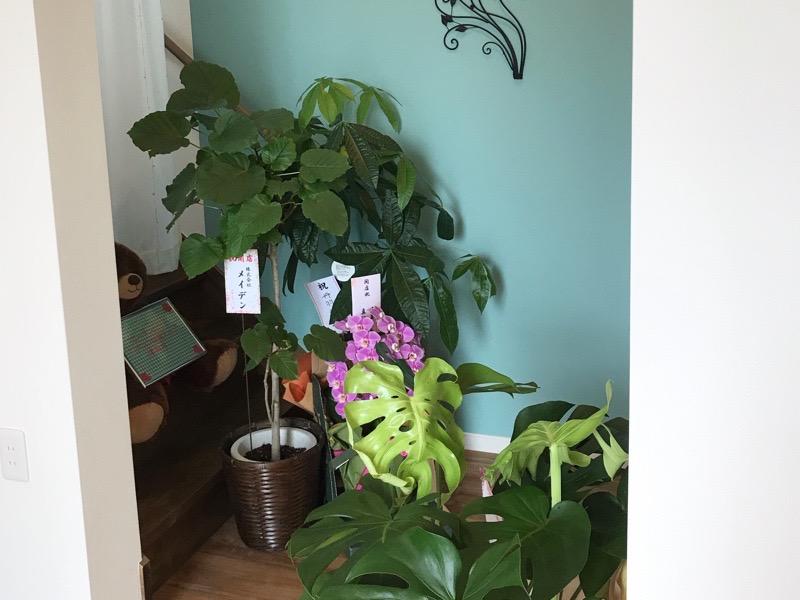 犬山 カフェスマイル4 モーニング 店内 羽黒 オープン