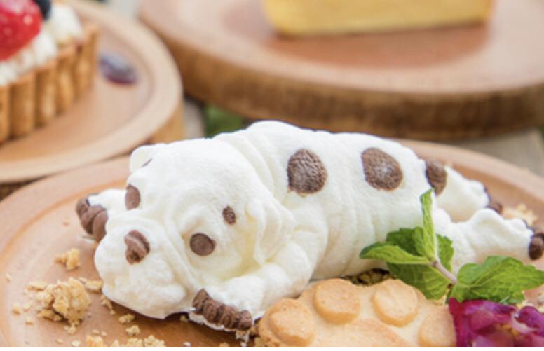犬山 ランチ カフェ オムレット8 ドッグアイス