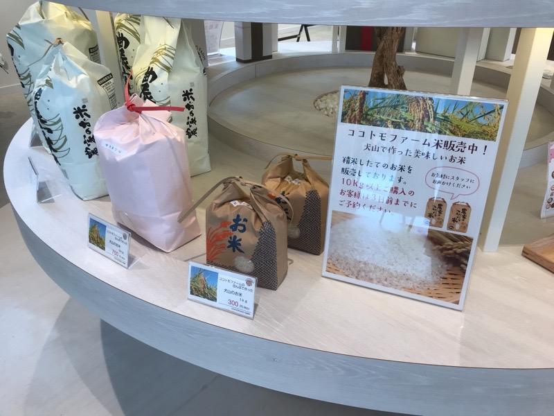 犬山城下町 ココトモファーム バウムクーヘン お米